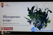 Представљен пројекат уређења Шумаричког језера